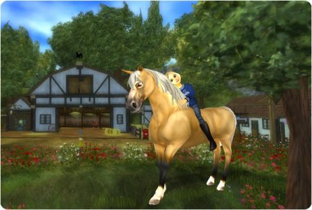 Star Stable Grafik