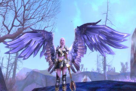 Aion Flügel
