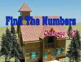 Find Numbers Challenge 18